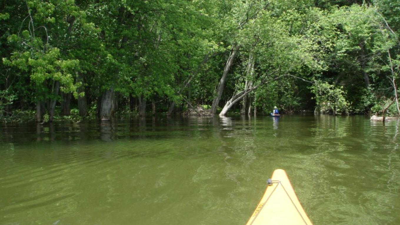 The lagoon-like mouth of Stacy Brook. – Courtesy of Cathy Frank