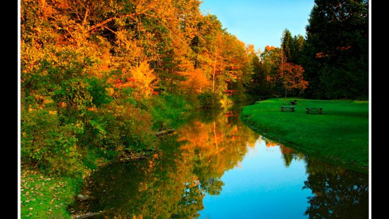 Fall foliage – Dave Crudele