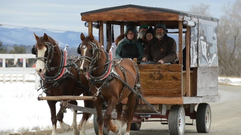 Wagon Rides - Gallup Ridge Farm – Connie Bush