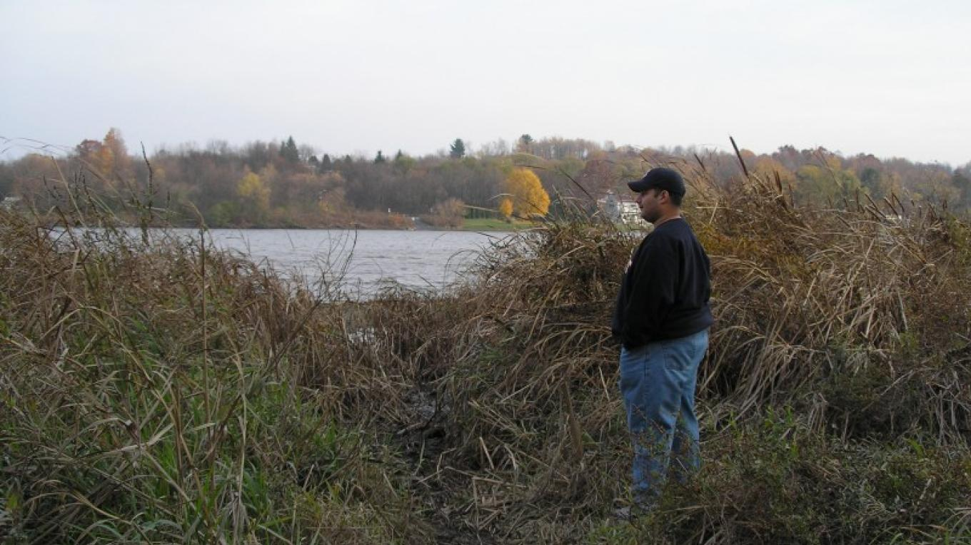 November in the Preserve. At end of trail from Whipple Bridge at the bank of Mohawk River. – Myla Kramer