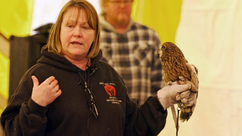 Kelly with Short-eared Owl - NYSWRC – Connie Bush
