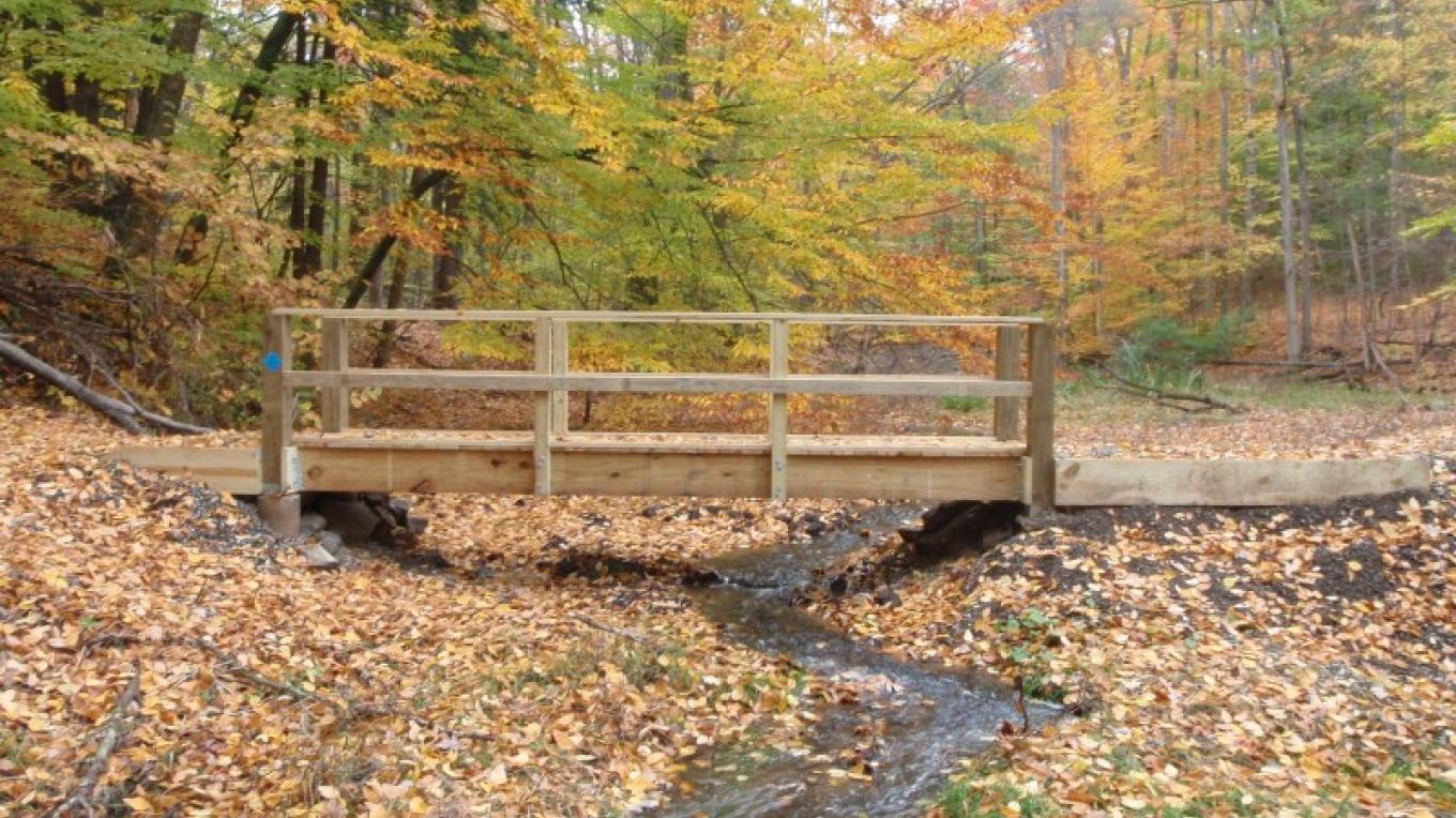 Pedestrian bridge created by Eagle Scout Charlie McGuffey – Jennifer Viggiani