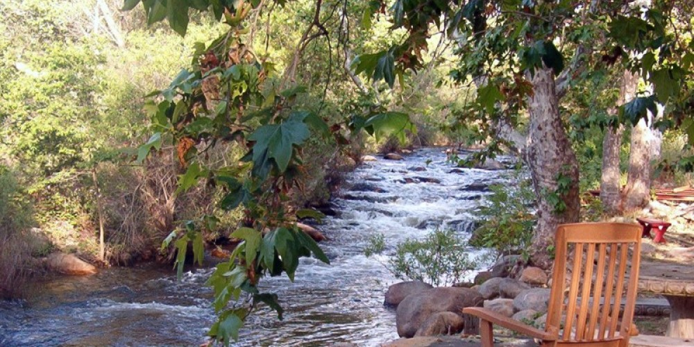 Relax by the river – Sharon