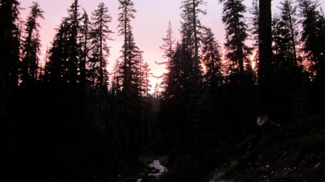 The setting sun casts a pink glow on King's Creek Falls. – Leah Duran