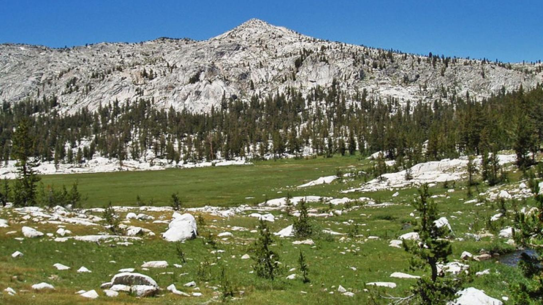 Meadow in Granite Basin – NPS