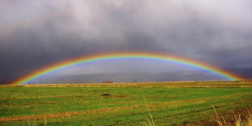 Dramatic Rainbows – Lorissa Soriano