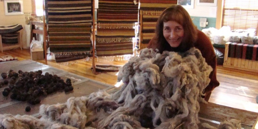 After the sheep are shorn owner Bonnie Chase's work begins. – Jean Bilodeaux