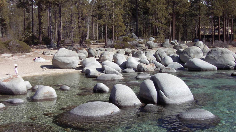 Sierra Mountain Webs