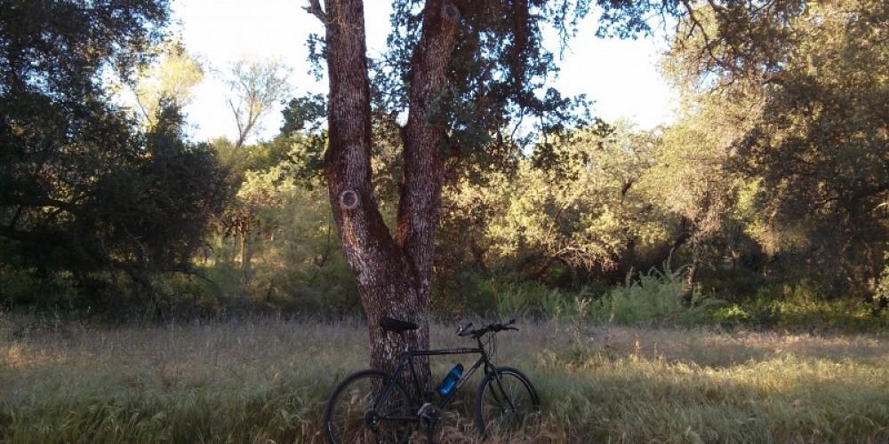 Miner's Ravine Bike and Walking Trail – Michael Stark
