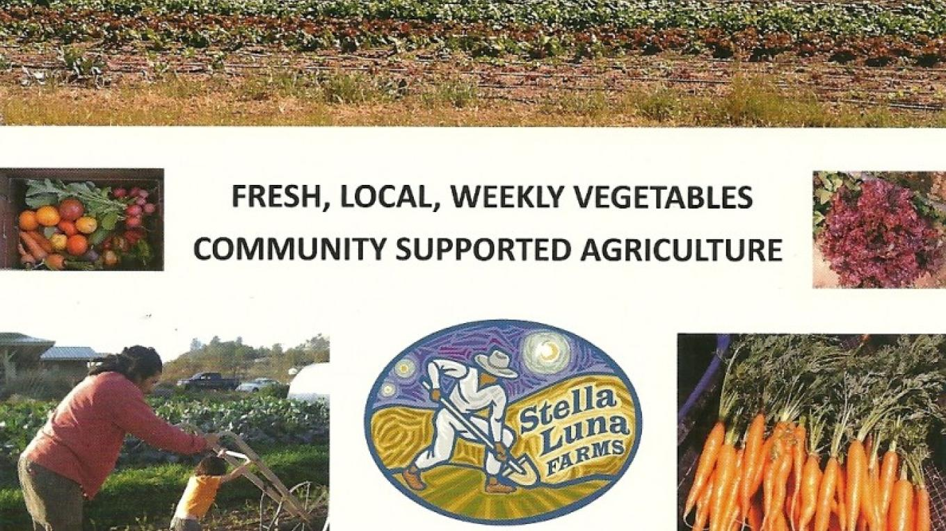 Stella Luna Community Supported Agriculture provides locally grown produce to the restaurant.