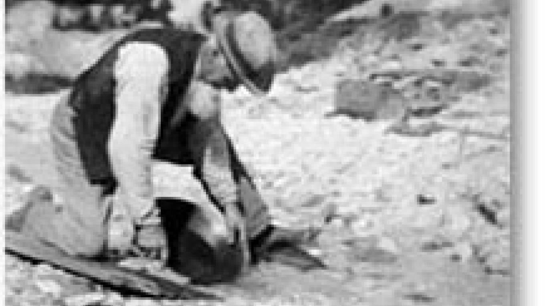 Placer miner