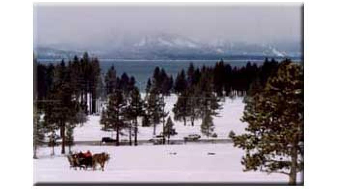 Sleighride in Lake Tahoe – Dwight Borges