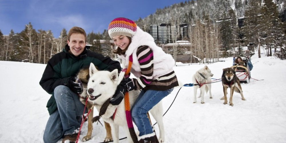 Dog sledding at Resort at Squaw Creek. – Tom Zikas