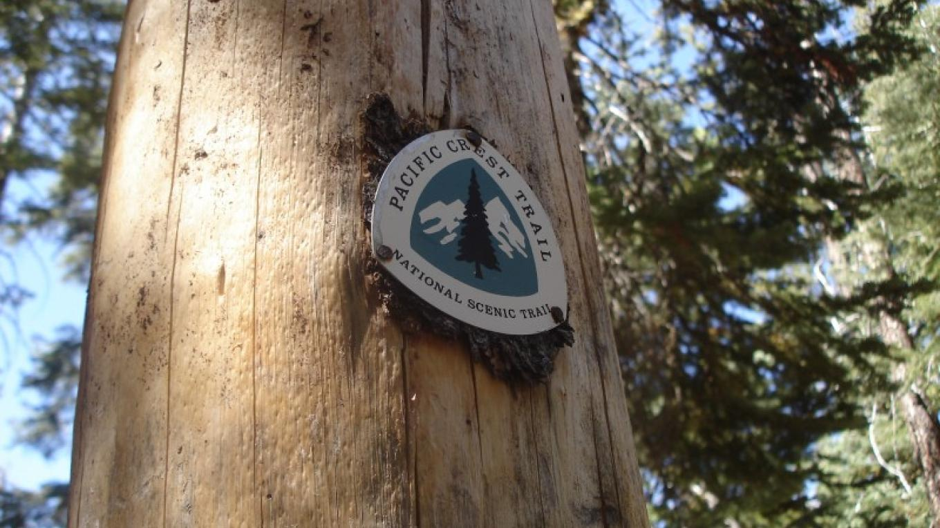 The Pacific Crest Trail winds through over 160 miles of the coniferous forests of Shasta County's upper elevations. – Ben Miles