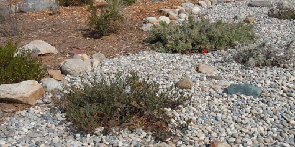 Rob Stone Memorial garden area – Elsah Cort