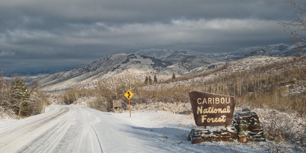 Caribou Wilderness.org