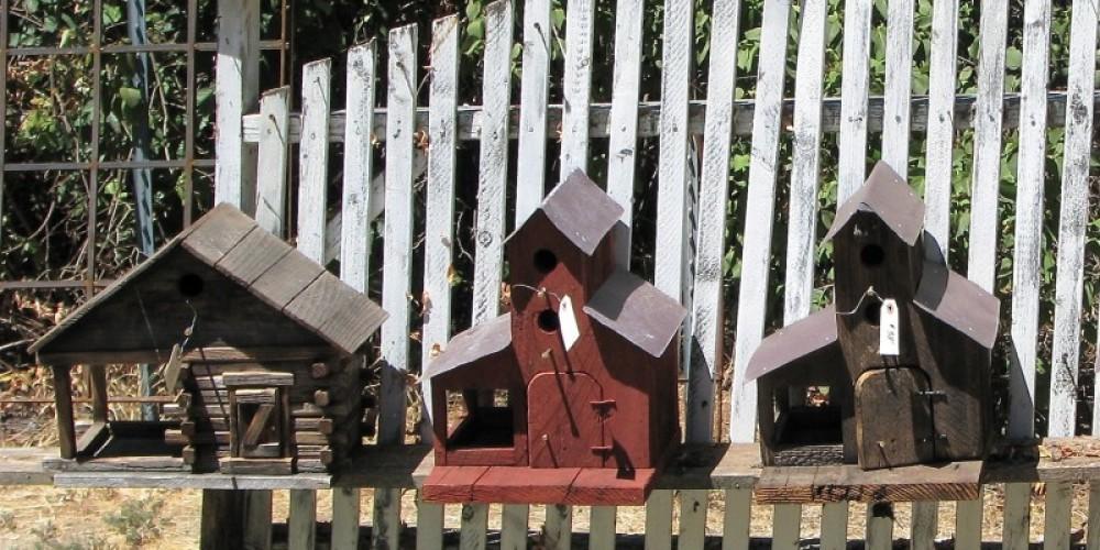 Handmade bird houses are ready for your garden. – Karrie Lindsay