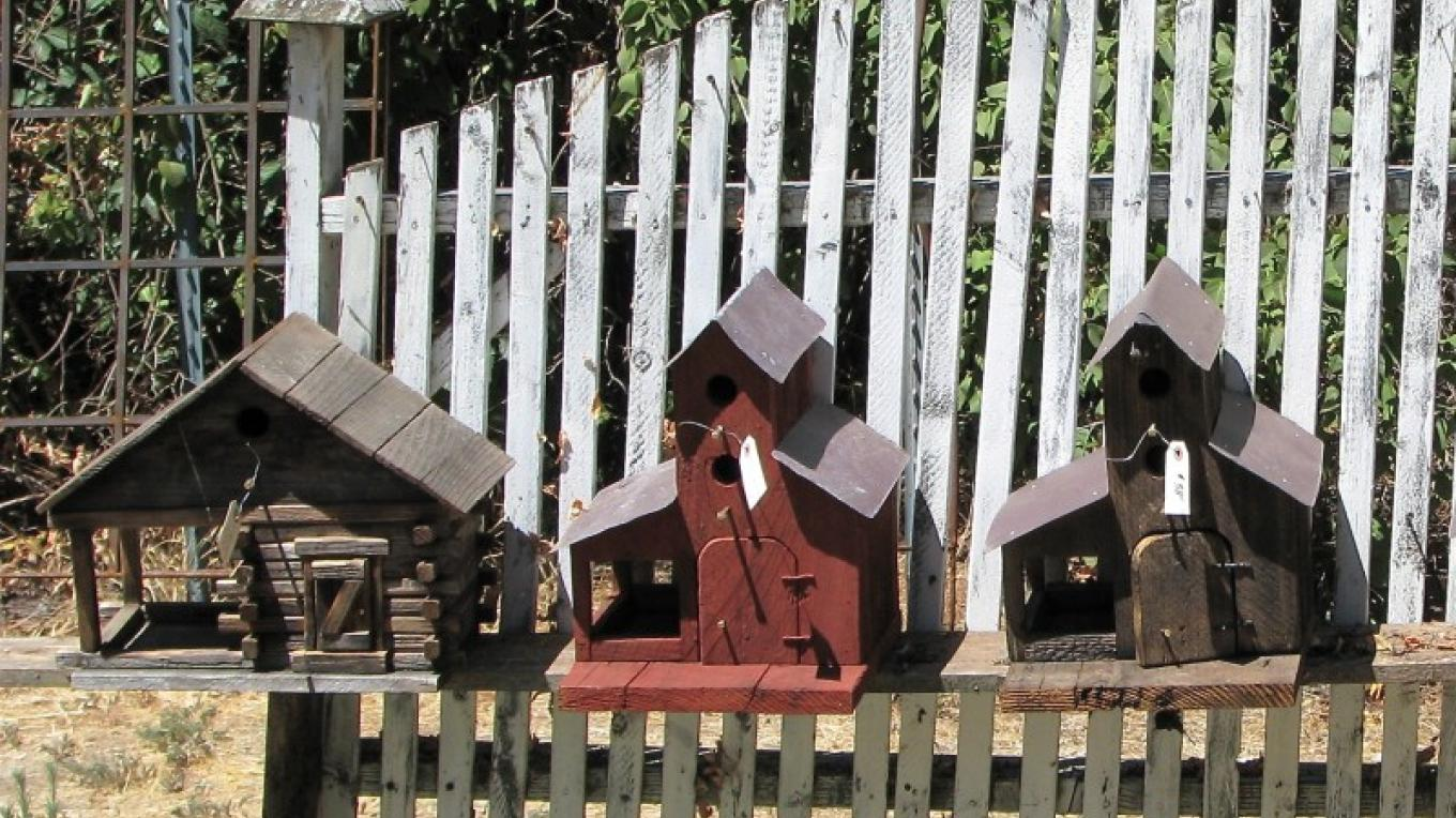 Handmade bird houses are ready for your garden. – Karrie Lindsay