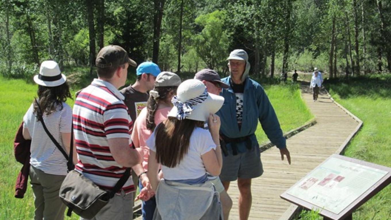 Learning about damage to Yosemite Valley's meadows while enjoying its scenic wonders.