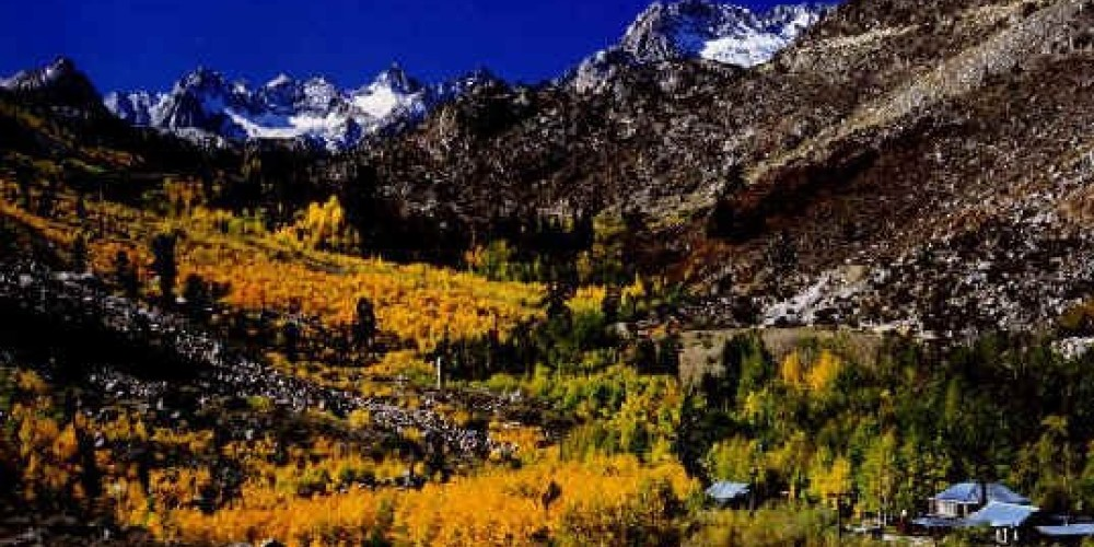 Cardinal Village Resort is tucked into the trees in the Bishop Creek Drainage on the edge of the Sierra High Country. – Cardinal Village Resort