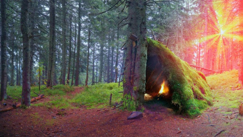 Summer Wilderness Survival Course - Lake Tahoe – Tahoe Jack's Adventure Authority