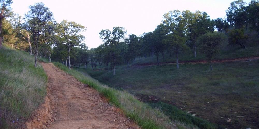 Shoreline trail 5 – Dave Jigour