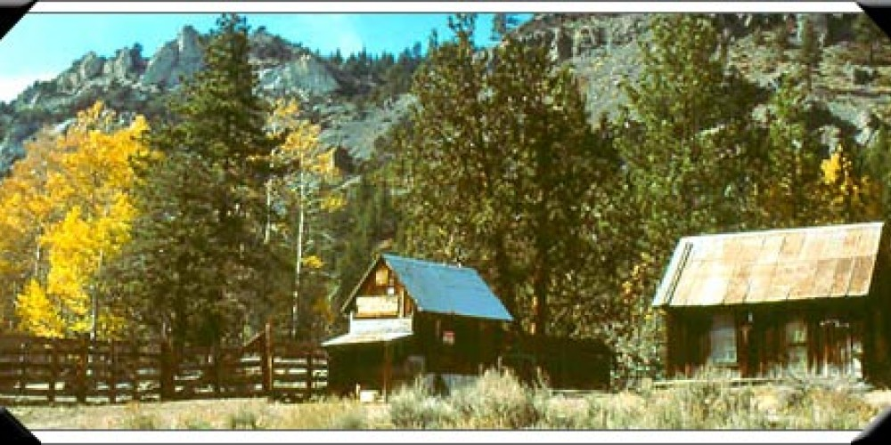 Scossa Cow Camp – Ebetts Pass National and Scenic Byway