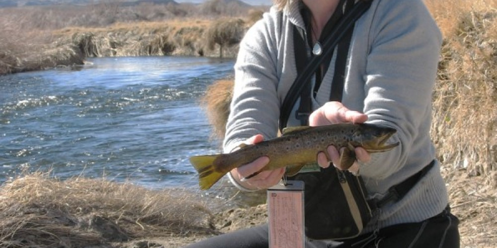 Anglers enjoy year-round fishing in the Owens River, above, and Pleasant Valley Reservoir. – Keith Rainville