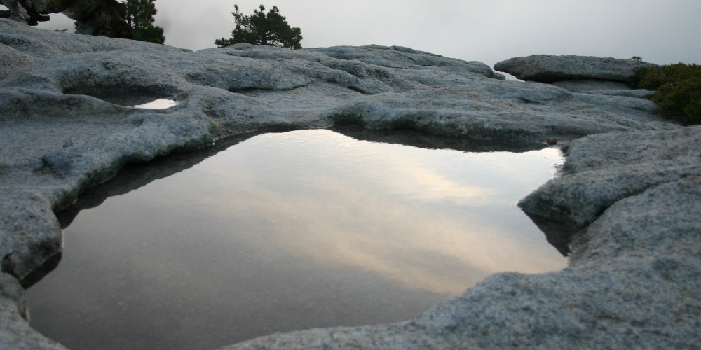 Pooled water on top of Sentinel Dome after first storm – Pat Althizer