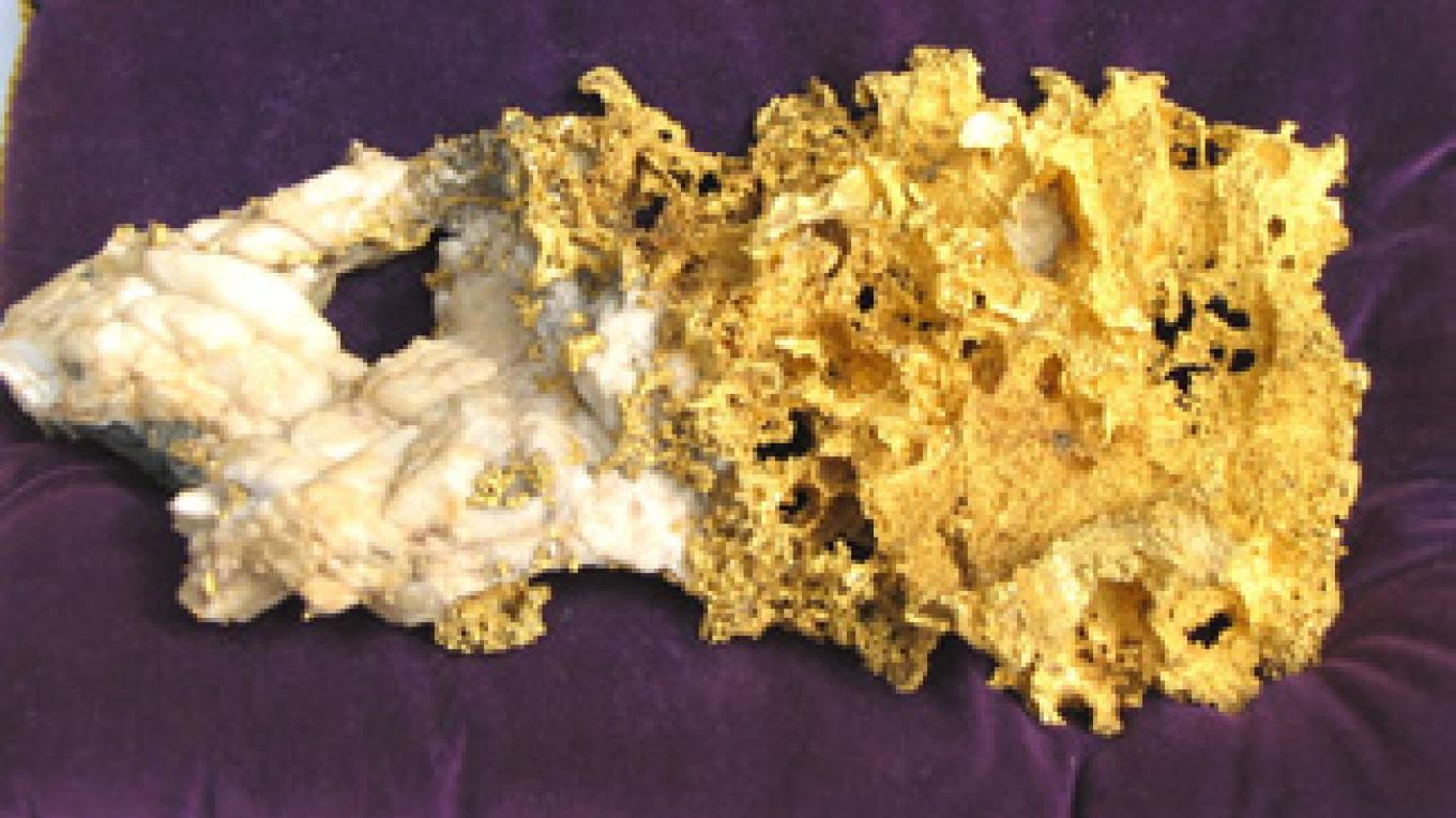 13.3 # gold specimen from nearby mine – Empire Mine State Park