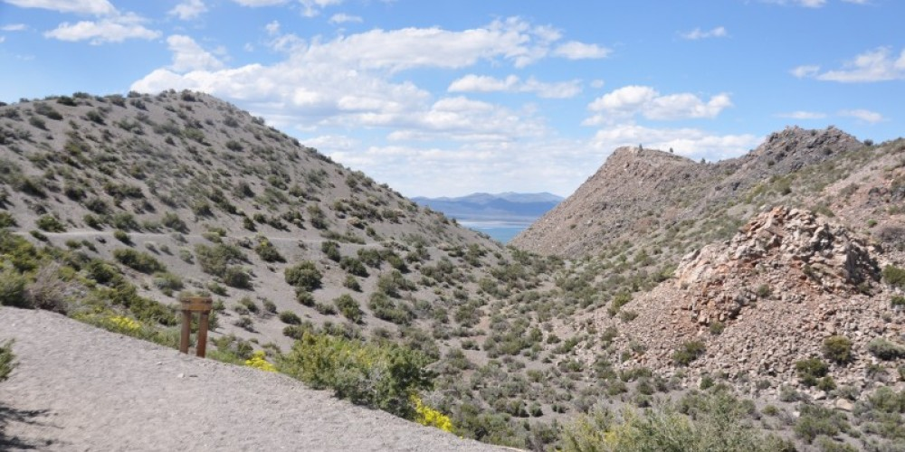 Figure 7; coulee on north side of Panum Crater and trail to summit – Terry Wright