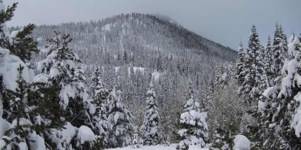 Blackwood Ridge – www.skitahoebackcountry.com
