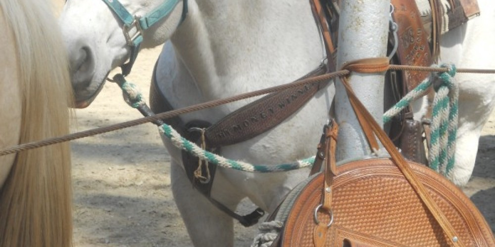 Team Roping at the Lions Arena, 4/23/11 – Leah Catherine Launey
