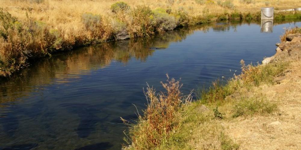 Natural Pond - Hot Spring – Lorissa Soriano
