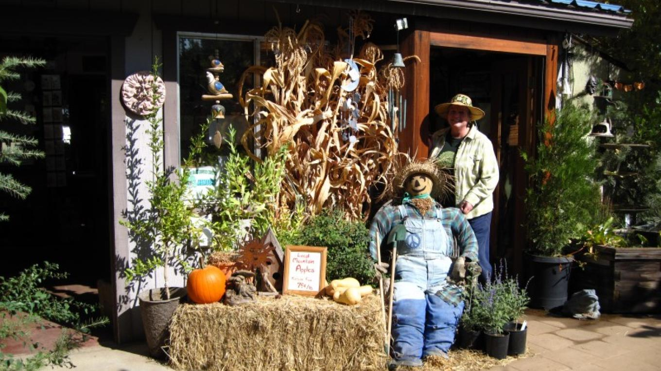 Front of shop with Shelley Steele at Harvest Festival – Bonnie Bladen