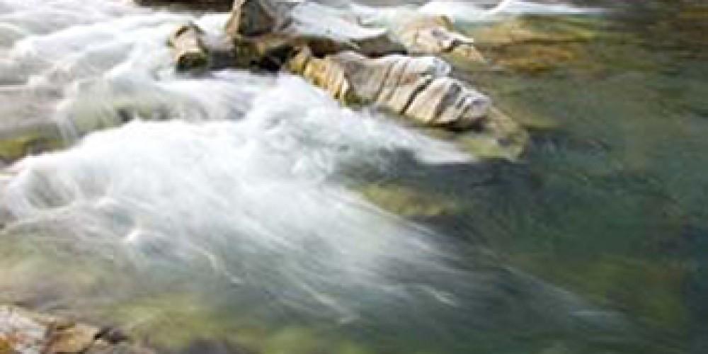 Yuba River – Wayde Carroll