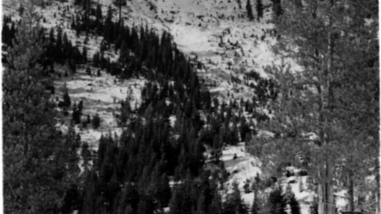 Historic image of Sierra Ski Ranch. – unknown