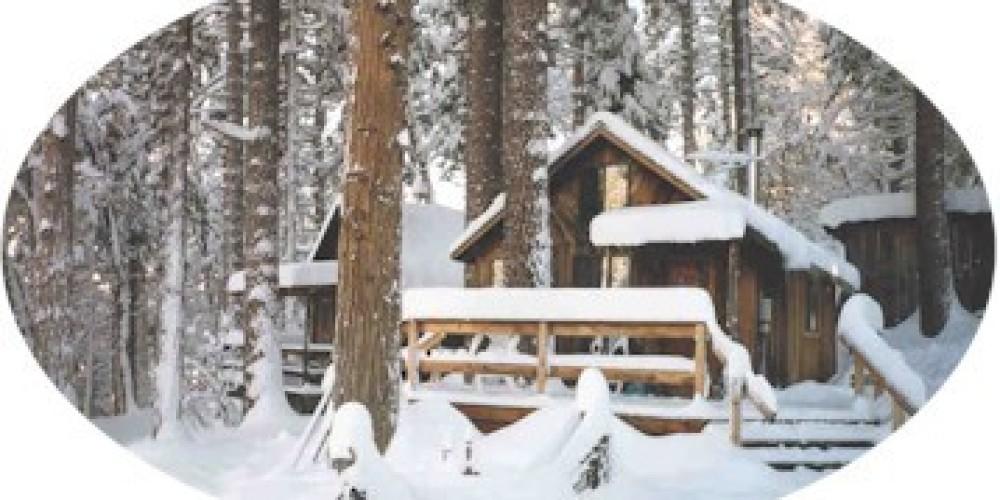 Larkspur Cabin at Sunset Inn – Lauren Nickell