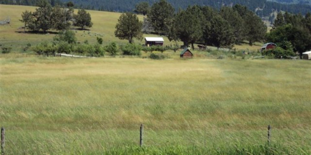 The Apple Shack on the hill. – Betsy Ingraham
