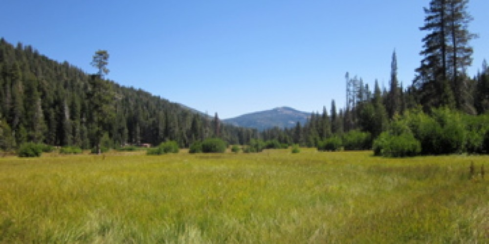 Mt. Harkness and the meadows of Warner Valley. – Leah Duran