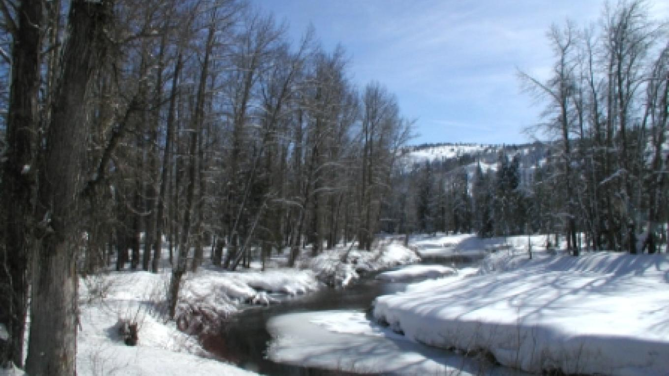 Yuba River at Gould Park – Placer Co. Land Trust