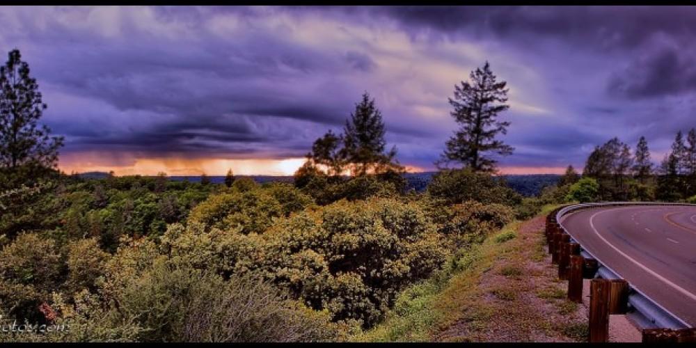 Scenic Foresthill Road – Darini Pointer - www.ffgphotos.com
