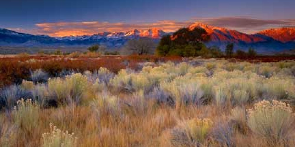 The Sierra towers above the floor of the Owens Valley – Photo by Galen Rowell/Mountain Light Gallery