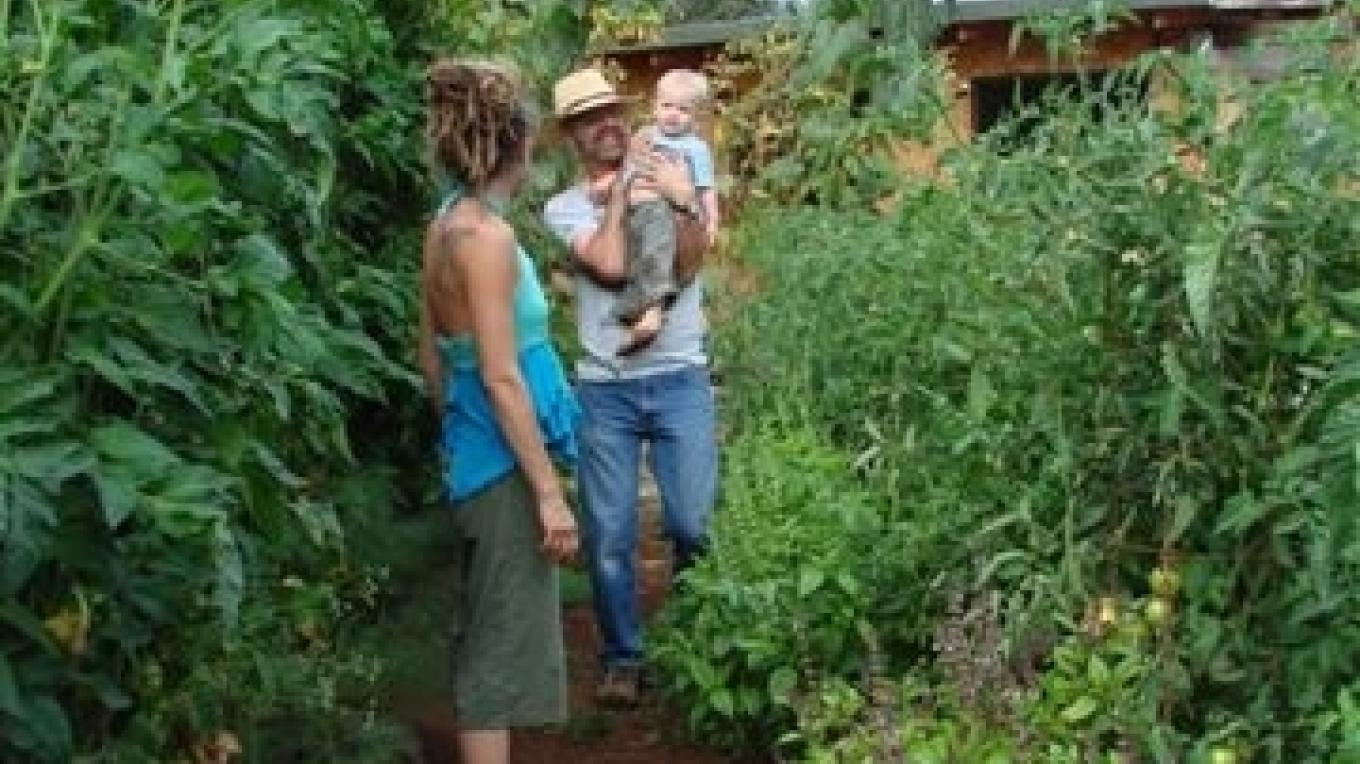 Tomato Beds are a family adventure – Janice