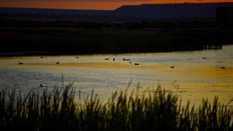 Modoc National Wildlife Refuge – John Kimura
