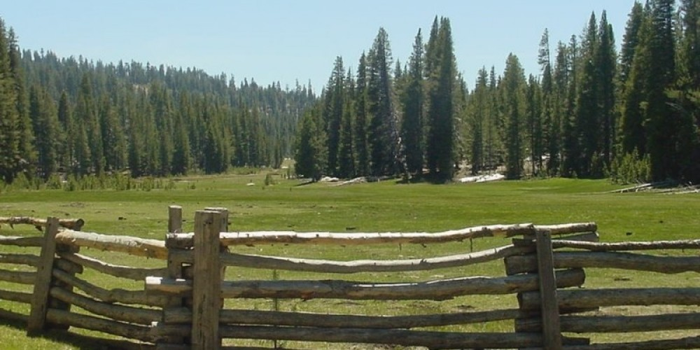 View of a portion of Big Meadows from the cabin – USDA-Forest Service