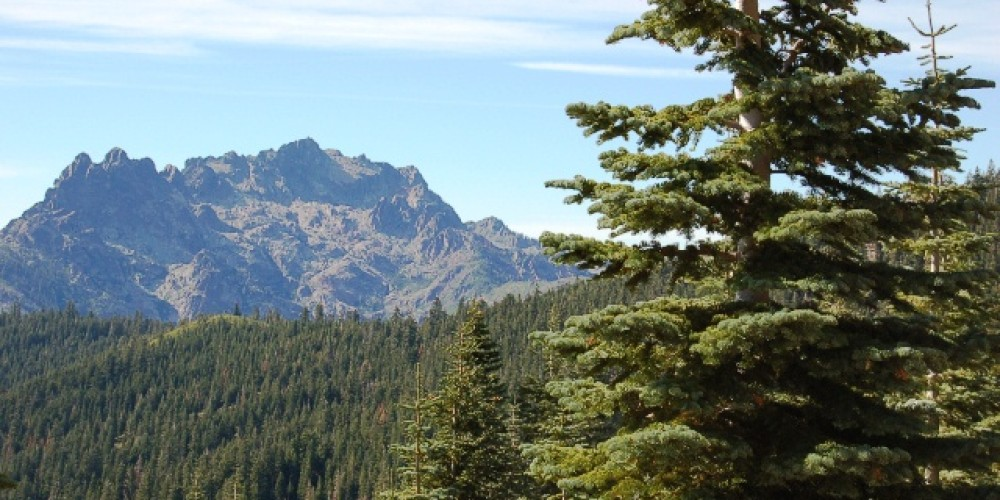 View of the the Sierra Nevada Mountains from Jackson Meadow Recreation Area. – Larry Farquhar