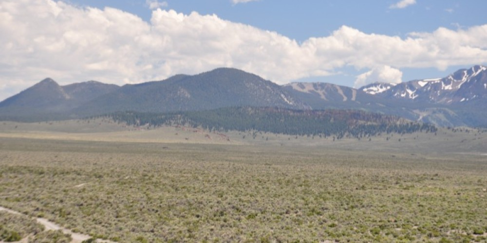 Figure 4: View south to June Mt . – Terry Wright