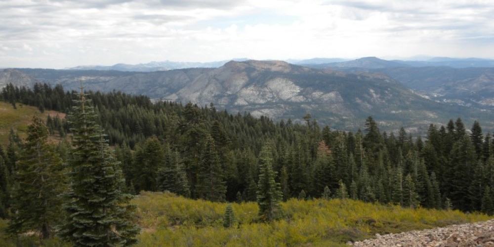View to the east from Grouse Ridge, Nevada County – Ann Westling