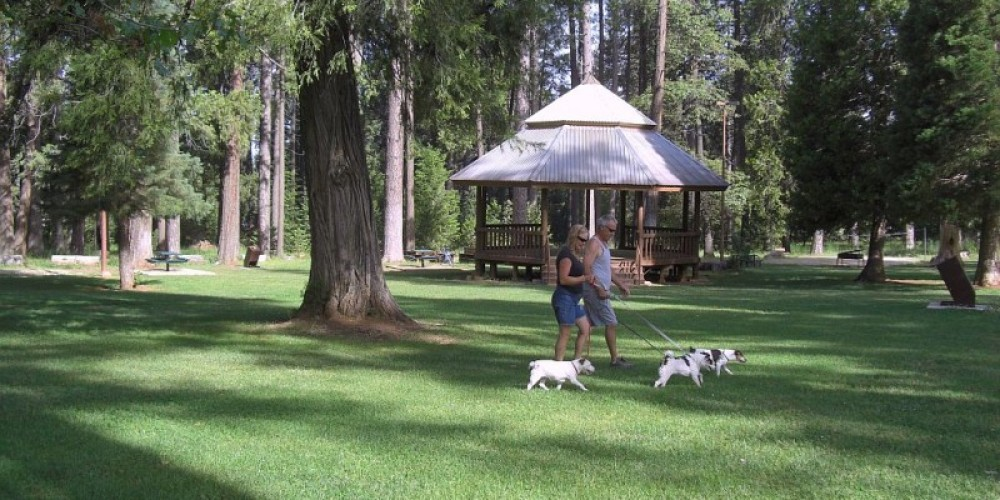 Foresthill's Memorial Park – Debbie Griffin